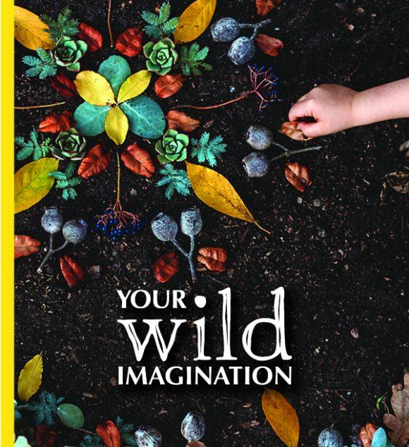 1YourWildImagination-Cover-BrookeDavis